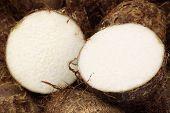picture of taro corms  - background of fresh taro root - JPG