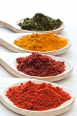 stock photo of hyssop  - Various assorted spices in different colors on wooden spoons - JPG