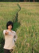 Beauty On The Rice Field