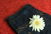 Flower on a Jeans