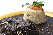 stock photo of mole  - Plate of chicken with black mole sesame seeds and rice - JPG