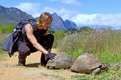 Attractive Backpacker Touches Turtle On Road