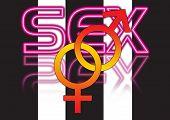 Sex Ground 23