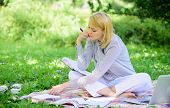 Woman With Laptop Sit On Rug Grass Meadow. Girl With Notepad Write Note. Business Lady Freelance Wor poster