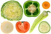 Vegetables, Cross Section