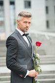Make Good First Impression. Valentines Day And Anniversary. Handsome Guy Rose Flower Romantic Date.  poster