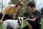 image of mans-best-friend  - teenagers playing with a dog in the park - JPG