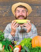 Healthy Lifestyle. Homegrown Organic Harvest Benefits. Farmer Hold Corncob Or Maize Wooden Backgroun poster