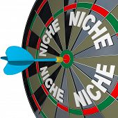 A blue dart hits a bulls-eye to find a unique Niche market with words representing several niches on
