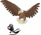 Eagle And Skunk