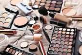 Set Of Different Professional Makeup Products On Furry Plaid poster