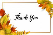 Thank You Card. Autumn Background With Falling Leaves, Golden Frame. Place For Text. Great For Brida poster