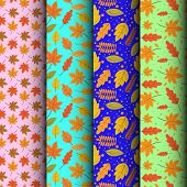 Seamless Pattern Concept Of Floral Autumn Vector Design Set. Autumn Background. Seasonal Autumn Mapl poster