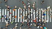 Aerial. People Crowd On Pedestrian Crosswalk. Top View Background. poster