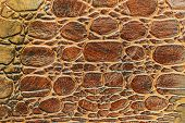 Brown Scales Macro Exotic Background, Embossed Under The Skin Of A Reptile, Crocodile. Texture Genui poster
