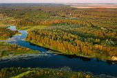 Aerial View Green Pine Forest And River Landscape In Sunny Summer Evening. Top View Of Beautiful Eur poster