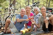 four senior people toasting at picnic