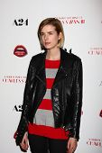 LOS ANGELES - FEB 4:  Agyness Deyn arrives at 'A Glimpse Inside the Mind of Charles Swan III' LA Pre