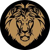 image of lions-head  - Black and gold Lion is a King of the animals - JPG
