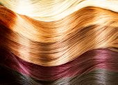 stock photo of natural blonde  - Hair Colors Palette - JPG