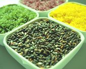 Black Green Yellow Red Rice