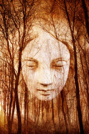picture of wraith  - Ghostly female face materialising in misty haunted forest - JPG