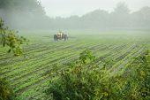 Tractor Spraying Crop