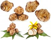 stock photo of jerusalem artichokes  - Jerusalem artichoke collection set with flower and leaves stem isolated on a white background - JPG