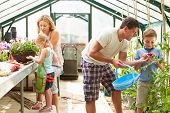 stock photo of greenhouse  - Family Working Together In Greenhouse - JPG