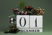 December 1: Save The Date Calendar With Winter Theme Colors, Fruit And Flowers, For Birthdays, Speci