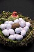 Close-up Of Chocolate Easter Egg Among Sugar Coated Candy Marble Eggs In Moss Birds Nest Against A B