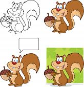 Cute Squirrel Cartoon Character Holding A Acorn  Collection Set