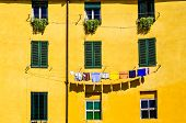 Detail Of Colorful Yellow House Walls And Windows
