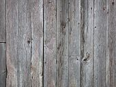Barn board textured background
