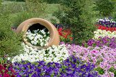 image of enormous  - Enormous clay pot with flowers on a flowerbed - JPG