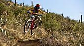 Downhill Bike Rider  Riding Down The Trail