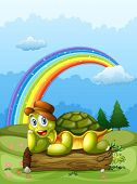 Illustration of a happy turtle above the log and the rainbow in the sky