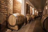 Wine Barrels In Cellar Of Malbec, Mendoza Province, Argentina