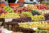Organic fruits and vegetables at an open street market.
