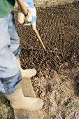 Raking Soil