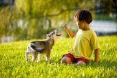 asiatische Jungen spielen mit Welpe auf Gras