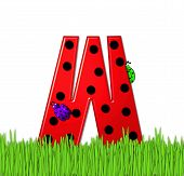 Alphabet Lady Bug Red W