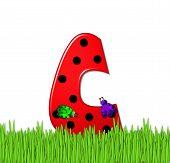 Alphabet Lady Bug Red C