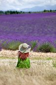 Young Romantic Woman Sitting In Front Of Violet Lavender Field In Provence, France.