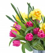 bouquet of pink tulips and yellow daffodils