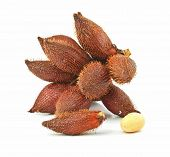 Tropical Fruit : (snake/ Salak/ Salacca/ Sala) On White Background