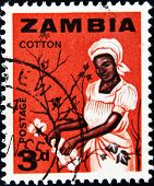 ZAMBIA - CIRCA 1964: A stamp printed in Zambia shows a woman picking cotton circa 1964