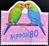 JAPAN - CIRCA 2000: A stamp printed in Japan shows two parrots circa 2000