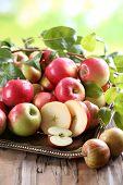 Juicy apples, close-up