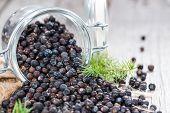 Portion Of Juniper Berries